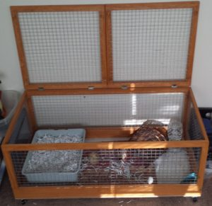 A rabbit hutch made for the babies we still have